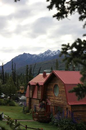 Tundra Rose Guest Cottages: Looking back over the owners house.