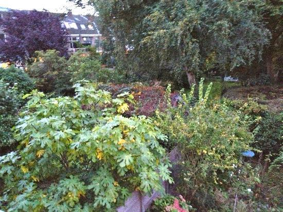 Pension Witte Singel: View from room facing the garden! Pic from balcony