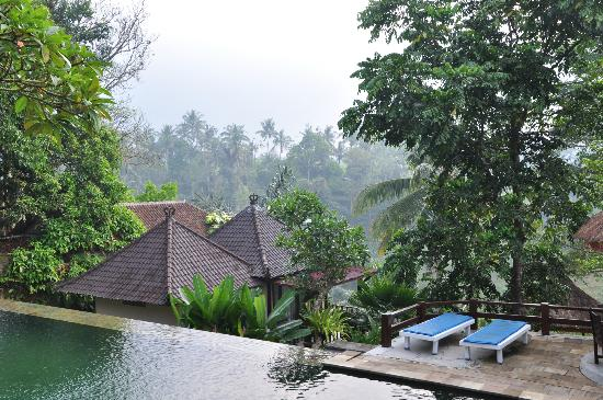 Beji Ubud Resort: very beautiful nature