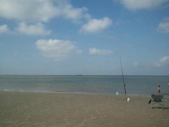 Fishing in galveston state park picture of galveston for Island beach state park fishing