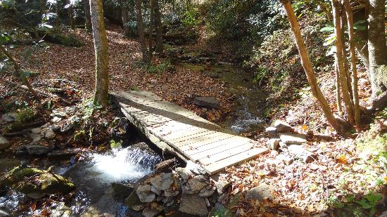 Enota Mountain Retreat: nearby bridge on our hike to the waterfall