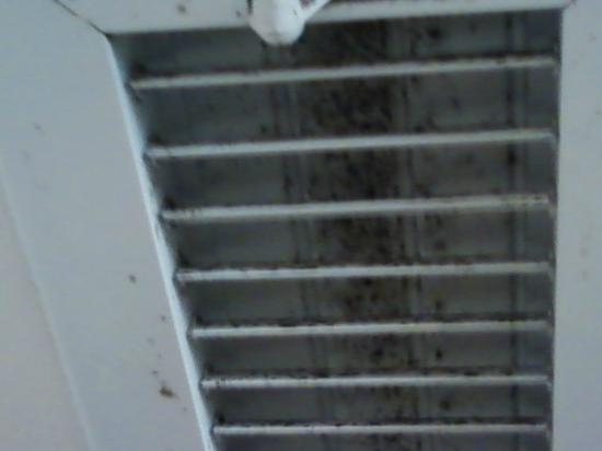 Quality Inn Oceanfront: Mold in and on vent in bathroom.