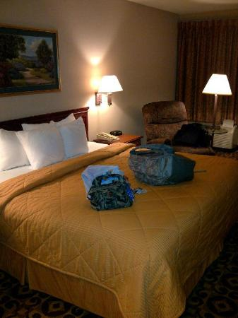 Comfort Inn & Suites: My room - third floor