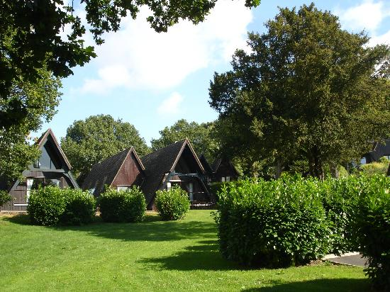 Oakham, UK: Some of the Lodges at Barnsdale Country Club