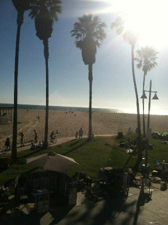 Venice Beach Suites & Hotel: Just a beautiful day...