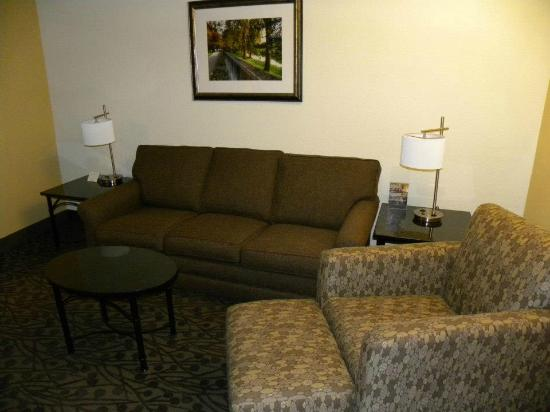 Drury Inn & Suites Frankenmuth: Living room area with sofa sleeper