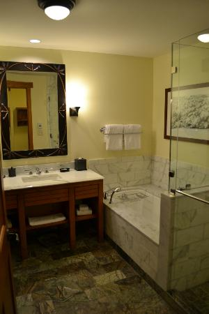 Stowe Mountain Lodge: Bathroom