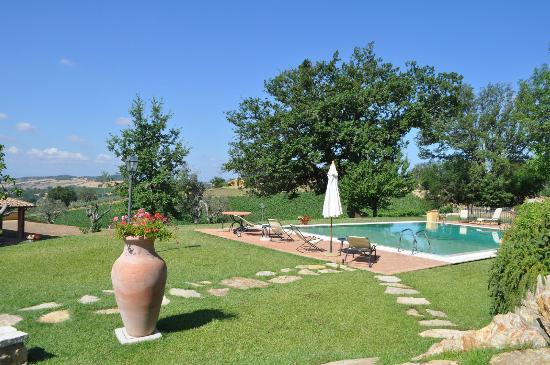 Locanda Terenzi : Hotel grounds with pool 