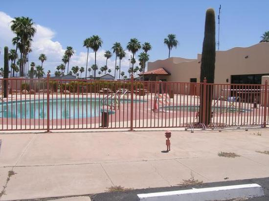 Mesa Spirit RV Resort: Cactus around pools now!