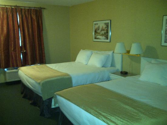 Super 8 Revelstoke: Beds