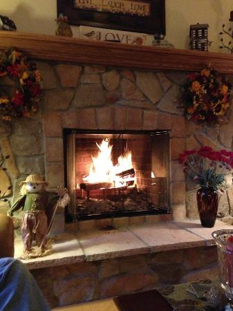 White Swan Inn Bed and Breakfast: Cozy fire while enjoying wine and cheese