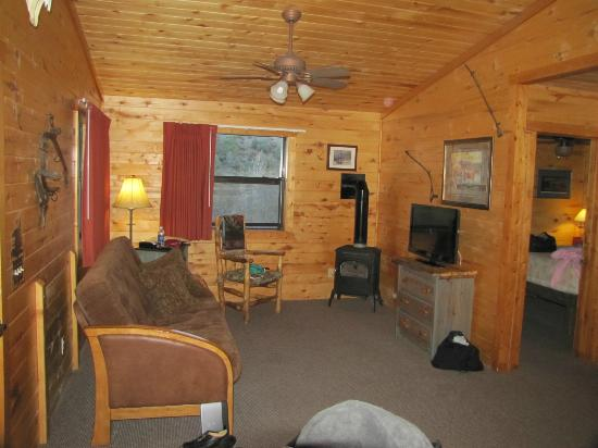 Fireside Inn Cabins : cozy living room