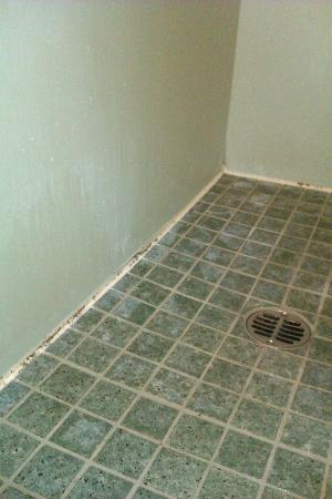 Days Inn &amp; Suites Santa Barbara: Black mold on shower floor
