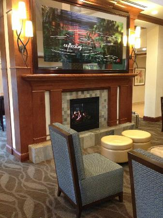 Hilton Garden Inn Madison West/Middleton: Fireplace in the lobby