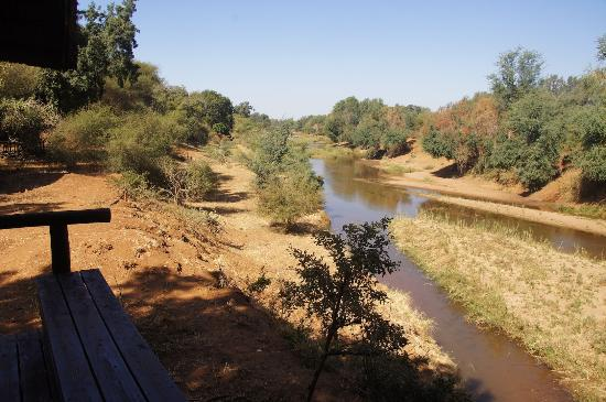 Pafuri Camp: Great view from your private tent to the river and the river bank.