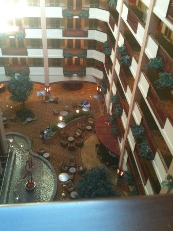 Embassy Suites Nashville SE - Murfreesboro: room view