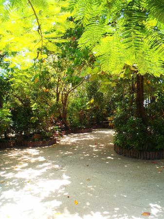 Ramon's Village Resort: grounds
