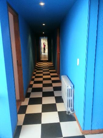 Tangoinn Downtown: The hallway- every floor has a different color