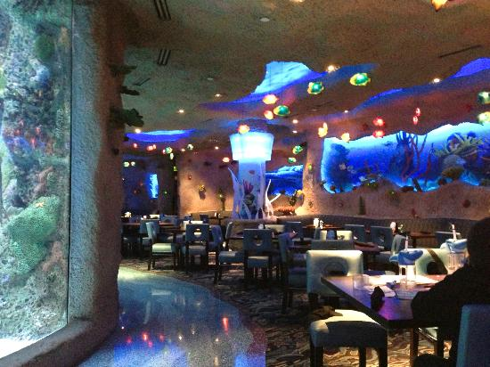 Watch the fish while you eat picture of aquarium for Dining nashville tn