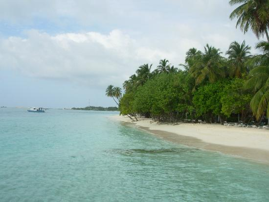 Meeru Island Resort & Spa: Beach