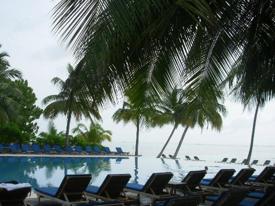 Meeru Island Resort & Spa: Infinity pool