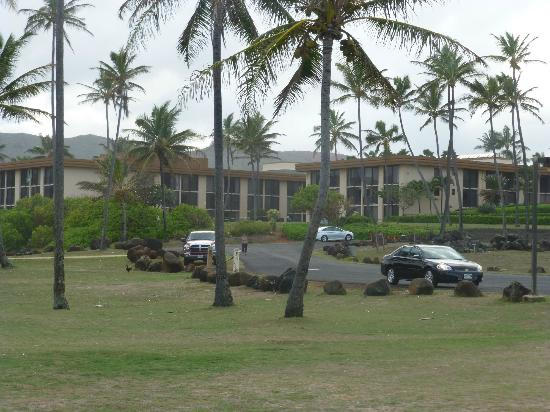 Aston Aloha Beach Hotel: Hotel Grounds