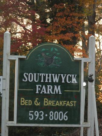 Southwyck Farm Bed and Breakfast: Everywhere we looked, the leaves were spectacular.