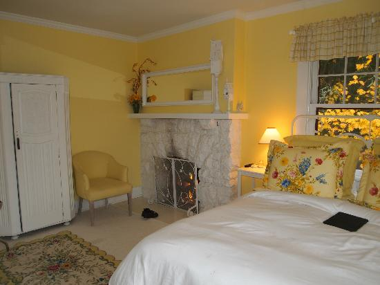 Lakecliff Bed and Breakfast: Daffodil room fireplace