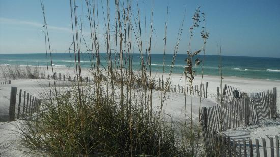 Cape San Blas Inn: The beach on the gulf - min. walk down path opposite