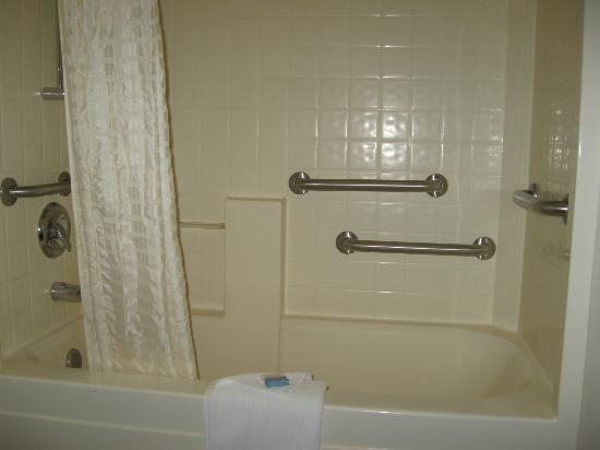 BEST WESTERN PLUS Lincoln Inn: Bathtub