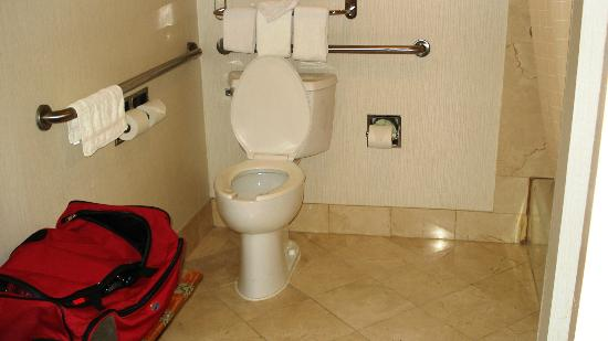 Holiday Inn New Orleans - Chateau Lemoyne: handicapped bathroom
