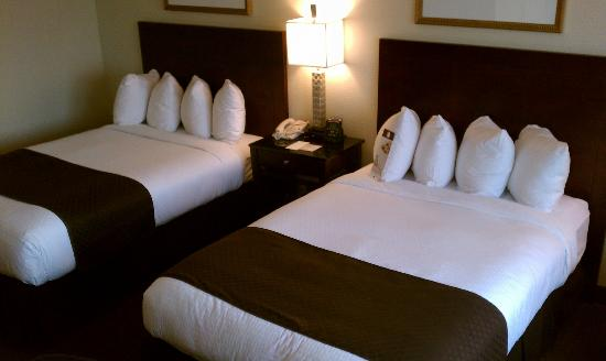 DoubleTree by Hilton Hotel Chicago - Schaumburg: clean and comfortable luxury beds and linens