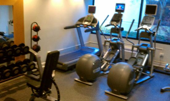 DoubleTree by Hilton Hotel Chicago - Schaumburg: exercise room