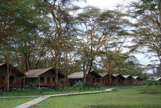 Lake Naivasha Crescent Camp