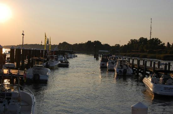 Chesapeake City, แมรี่แลนด์: Schaefer's Marina view on the canal