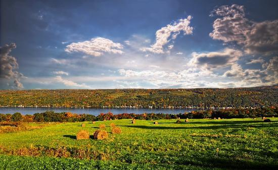 Finger Lakes Wine Country, NY: Visit in the fall for the foliage and harvest season