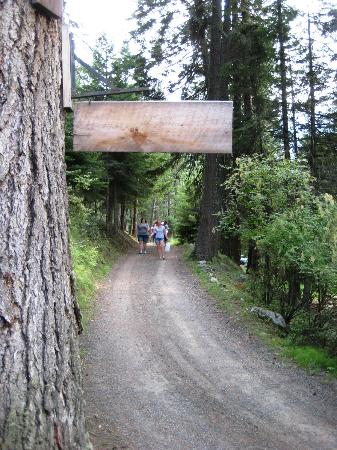 Wallowa Lake Resort: Steep driveway down to cabin