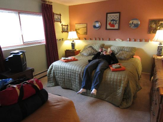 Alaskan European Bed & Breakfast: The Holland room at the Alaska European B&B