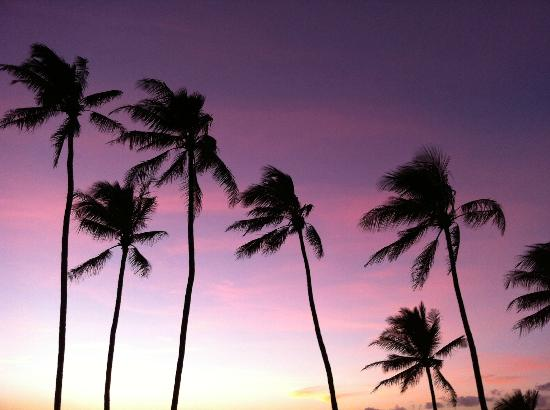 Mahina Surf: sorry, more sunset pics. Stunning