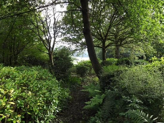 Caerdeon, UK: Garden Woodland Walk