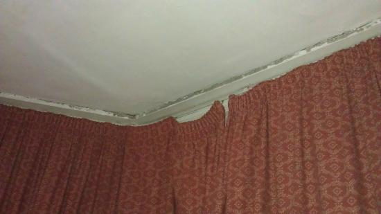 Chelsea House Hotel: mold in the corner