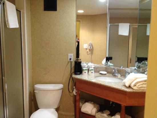 Hampton Inn Atlanta - Cumberland Mall / NW: bath, clean, but small corner vanity (shower-only room)
