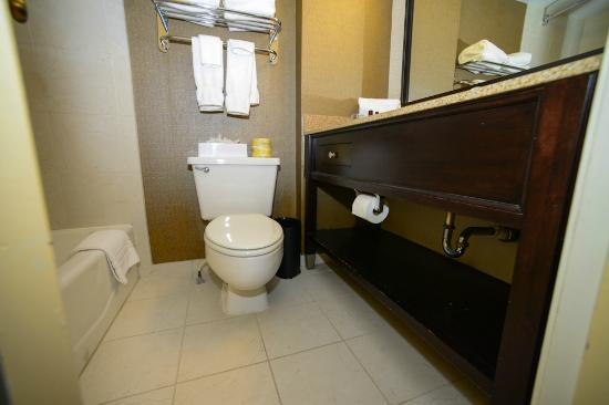 Embassy Suites Hotel Baton Rouge: Bathroom