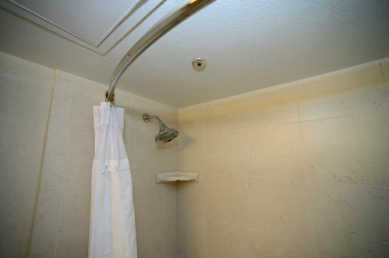 Embassy Suites Hotel Baton Rouge: Shower with crazy thing on ceiling