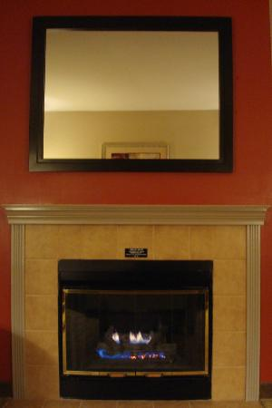 Hampton Inn &amp; Suites Seattle Downtown: Fireplace