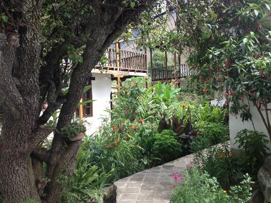 El Albergue Ollantaytambo: Backyard