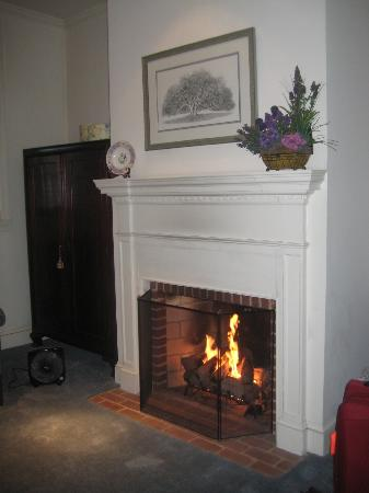 Scarborough Fair Bed & Breakfast: gas fireplace