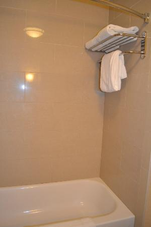 Holiday Inn Express Hotel & Suites Fairbanks: shower area