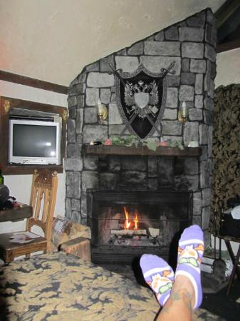 Castle Wood Theme Cottages: Fireplace