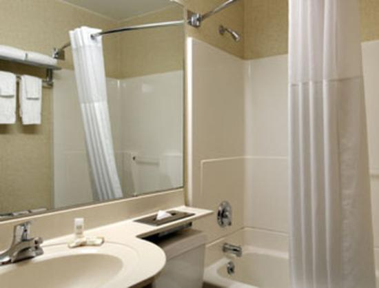 Microtel Inn by Wyndham Henrietta/Rochester: ADA Bathroom